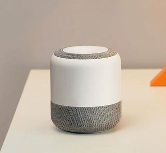 Is Smart Speaker a Privacy Thief